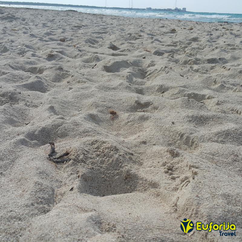 Es Trenc - plaže majorka