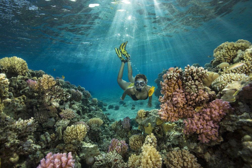 Egipat - crveno more