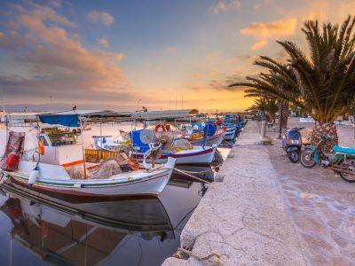 grčko pstrvo za vašu porodicu - rodos